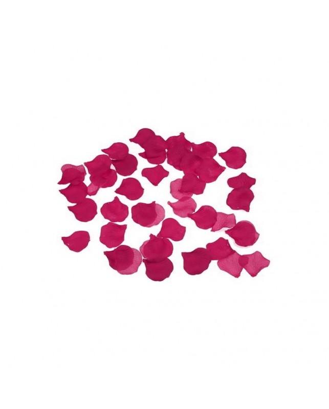 100 Petalos Color Fucsia